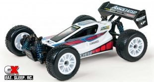 Team Associated Reflex Qualifier 1:18 RTR Buggy